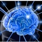 cerveau pour interface télépathique