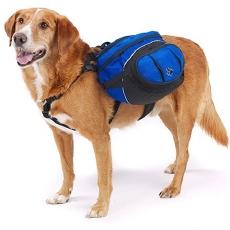Traquez votre chien avec Google Universal Analytics, un GPS et  de la 3G