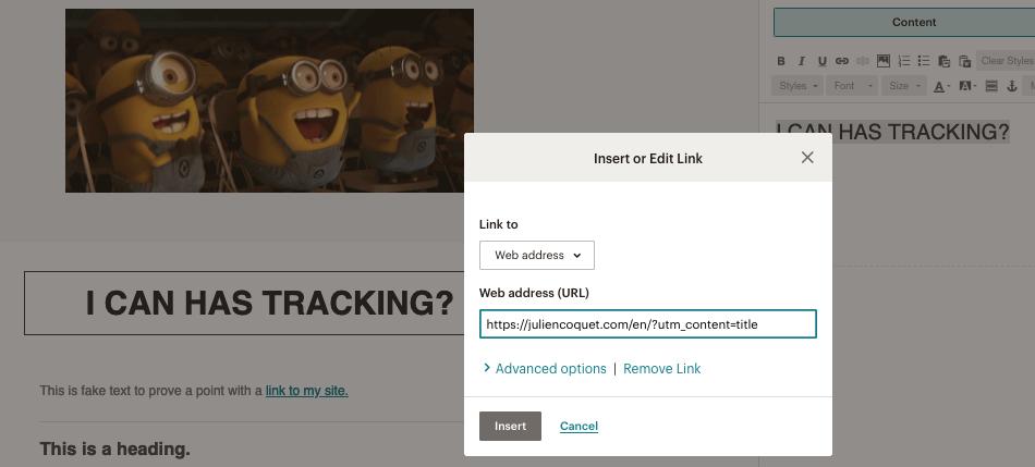 Google Analytics mailchimp insert link